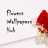 Flower Wallpapers Hub