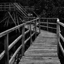 Black bridge by Alexander P - Black & White Street & Candid