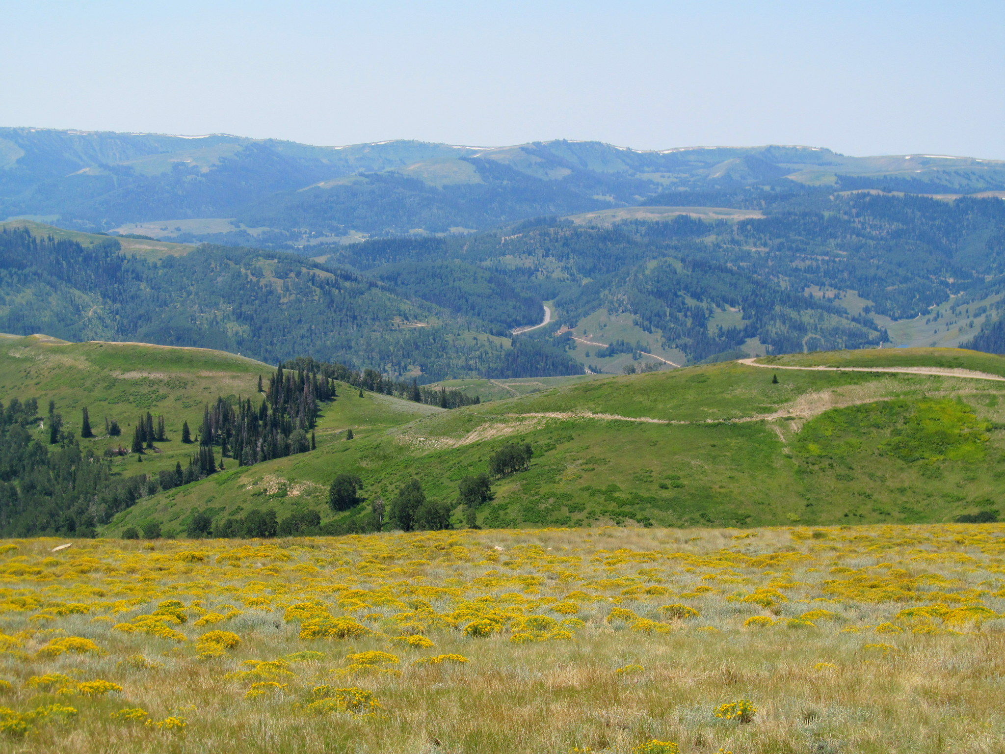 Photo: On the horizon is Skyline Drive, the backbone of the Wasatch Plateau