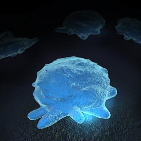 Macrophage EM electon microscope style 1 by Emily Fnm3d - Print & Graphics All Print & Graphics ( phagocytes, vertebrate animals, initiate, adaptive immunity, non-specific defense, innate immunity, monocytes, macrophages, defense mechanisms )