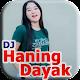 DJ Haning Dayak MP3 icon