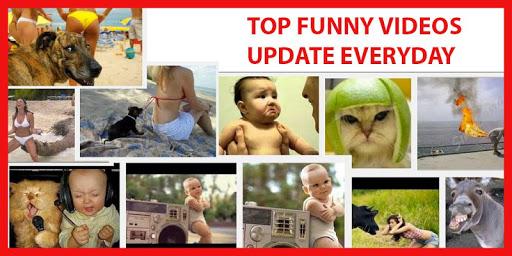 Top Funny Videos