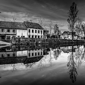 There is a the line which separates ...  by Miguel Silva - Black & White Landscapes ( houses, miguel silva, pavia, reflections, trees, viseu, cityscape, portugal, river, street photography,  )