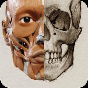 App 3D Anatomy for the Artist APK for Windows Phone