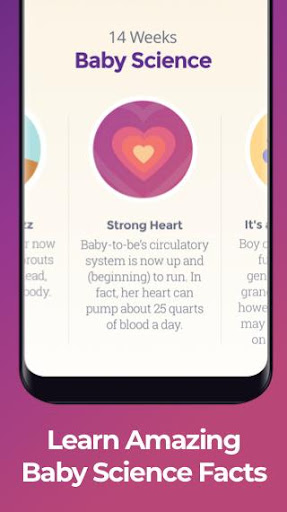 Pregnancy & Baby Tracker 5.2.1 screenshots 4