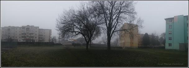 Photo: Spatiu verde din fata Bisericii Greco-Catolice de pe Calea Victoriei, Mr.1 - 2018.01.09