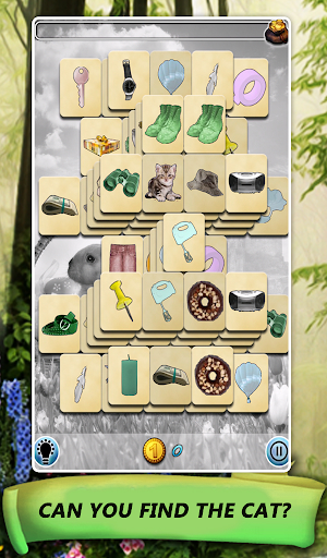 Hidden Mahjong: Spring Premium