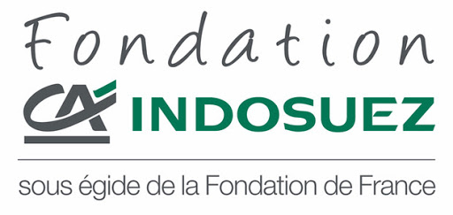Logo Fondation CA indusuez mécénat financier