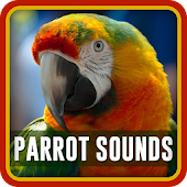Parrot Sounds & Ringtones