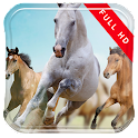 1st Person Horse Riding LWP icon