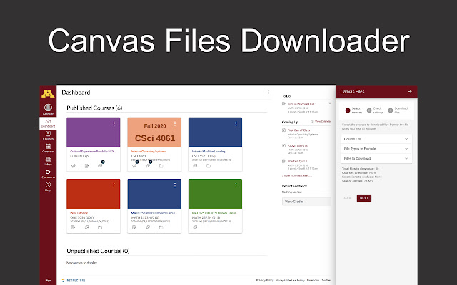 Canvas Files