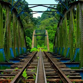Old Bridges by Maki Sumawijaya - Buildings & Architecture Bridges & Suspended Structures