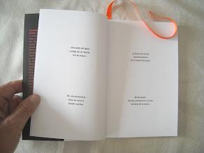 Photo: Otras dos páginas del libro. Es de la sección de haikus primaverales:   Una pata del gato cuelga de la repisa. Sol de mayo.