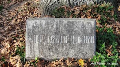"Photo: ""Stejarul Unirii"" - inscriptie - (2013.10.29)"