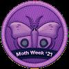 Moth Week 2021