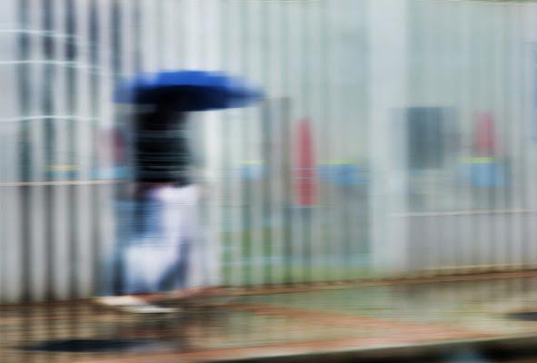 lost in the rain di Zerosedici