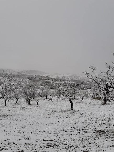 Bellísima imagen de Vélez Rubio nevado.