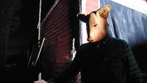 The Pigman thumbnail