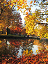 Photo: Orange and yellow leaves reflected in a lake at Eastwood Park in Dayton, Ohio.