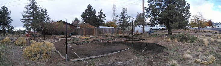 Photo: looking northeast- towards the house (brown)