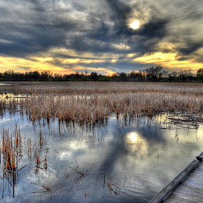 Boardwalk Reflections by Dave Knapp - Landscapes Sunsets & Sunrises ( sunset, yellow and grey, reflections, rays of light, boardwalk )