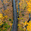 Looking Down From Summit Peak Tower by D L - Buildings & Architecture Bridges & Suspended Structures ( wisconsin, park, peak, travel, up, michigan, wilderness, mountains, autumn, porcupine, u.p., fall, summit )