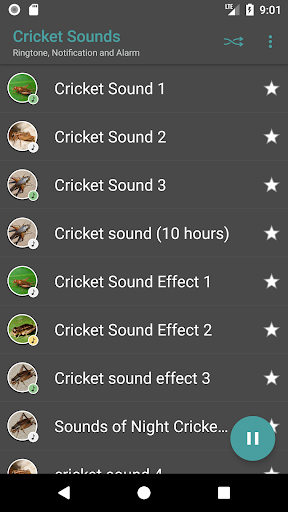 Download Appp io - Crickets Sounds Google Play softwares