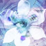 Blue Iris 2.0.68 (Paid)