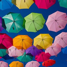 Agitágueda by Carlos Costa - Artistic Objects Clothing & Accessories ( hanging, umbrellas, colors, umbrella, águeda, colorfull, portugal, hang, rain,  )