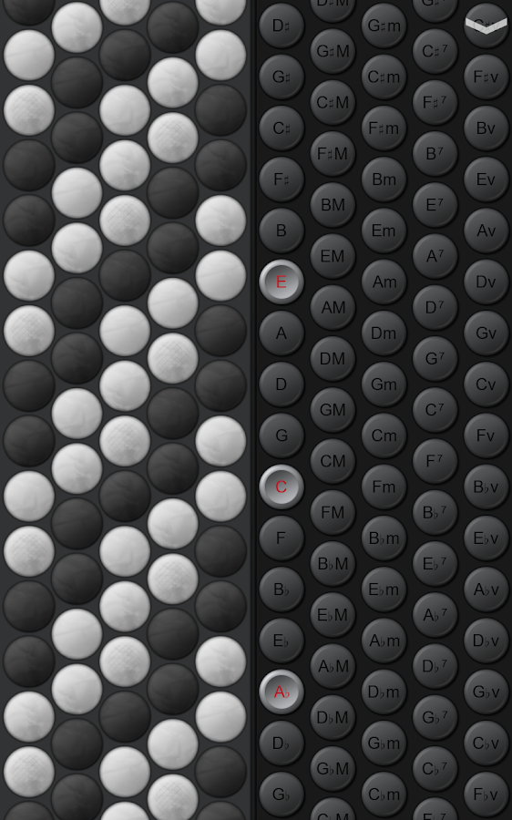 Button Accordion- screenshot