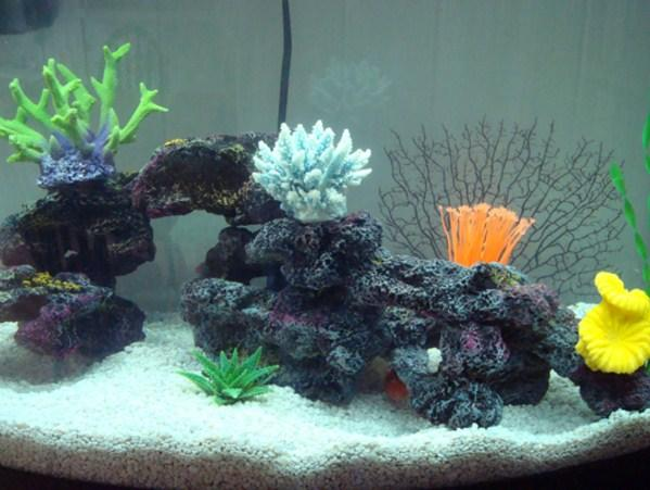 Aquarium Decoration Ideas Android Apps On Google Play