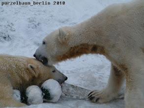 Photo: Knut ueberlaesst Gianna grosszuegig das Spielzeug ;-)