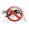 India Fights  Dengue icon