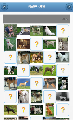 狗品种 - 测验