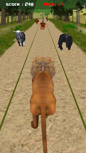 Jungle Lion Run 3D