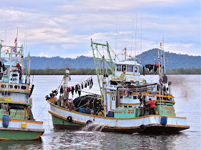 Photo: fishing boat returning to Kuraburi pier from its morning catch