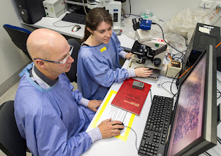 Photo: A/Prof David Curtis (Group Leader) and Ms Ashlee Conway (PhD student). Lab link: http://www.acbd.monash.org/research/stem-cell.html
