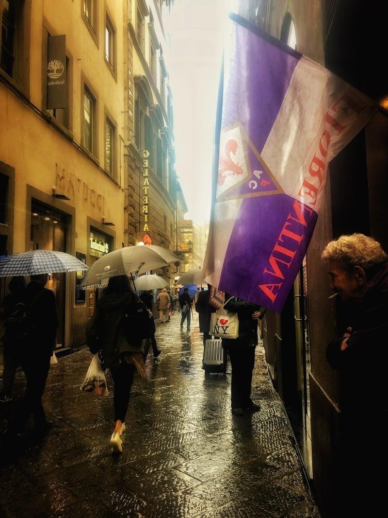 Scende la pioggia di paola_fusani
