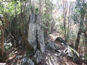 石碑のような岩