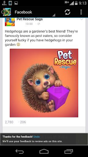 New Saga Guide of Pet Rescue
