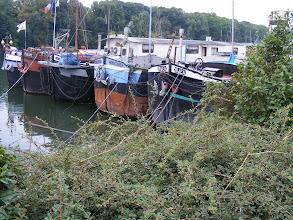Photo: In a number of spots, the barges are moored 5 across. Some are working ships, and some houseboats, but it's not always easy to tell which.