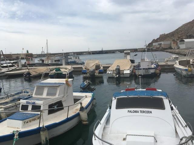Barcos de artes menores amarrados a los nuevos pantalanes.
