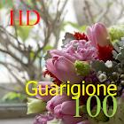 100 Guarigione HD icon