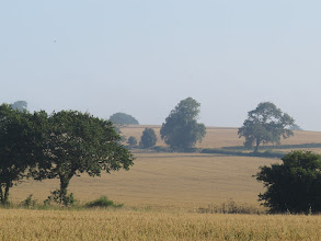 Photo: 26 Aug 13 Woodhouse Lane All will soon be gathered in ... a view from Woodhouse Lane. (Ed Wilson)
