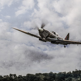 Spitfire by Jocke Mårtensson - Transportation Airplanes ( plane, sky, warbird, spitfire, world war ii,  )