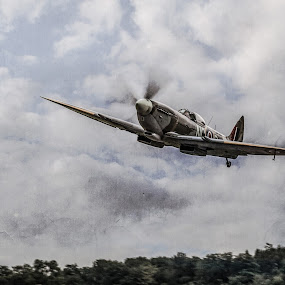 Spitfire by Jocke Mårtensson - Transportation Airplanes ( plane, sky, warbird, spitfire, world war ii,  )