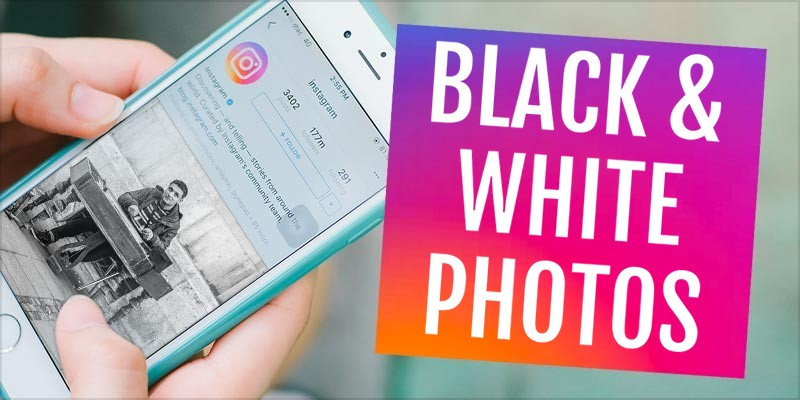 What Your Instagram Feed Says About You – PlayBrain