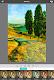 screenshot of Artista Impresso