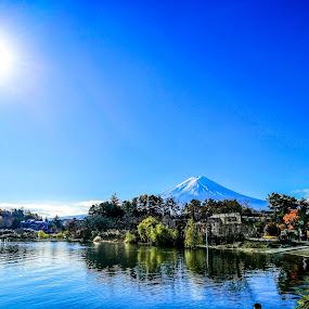 Mt. Fuji in Japan by Jurich Bitco - Nature Up Close Leaves & Grasses ( mountain, nature, japan, lake )