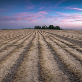 Away From it All by Jon Marshall - Landscapes Prairies, Meadows & Fields ( field, france, nikon )